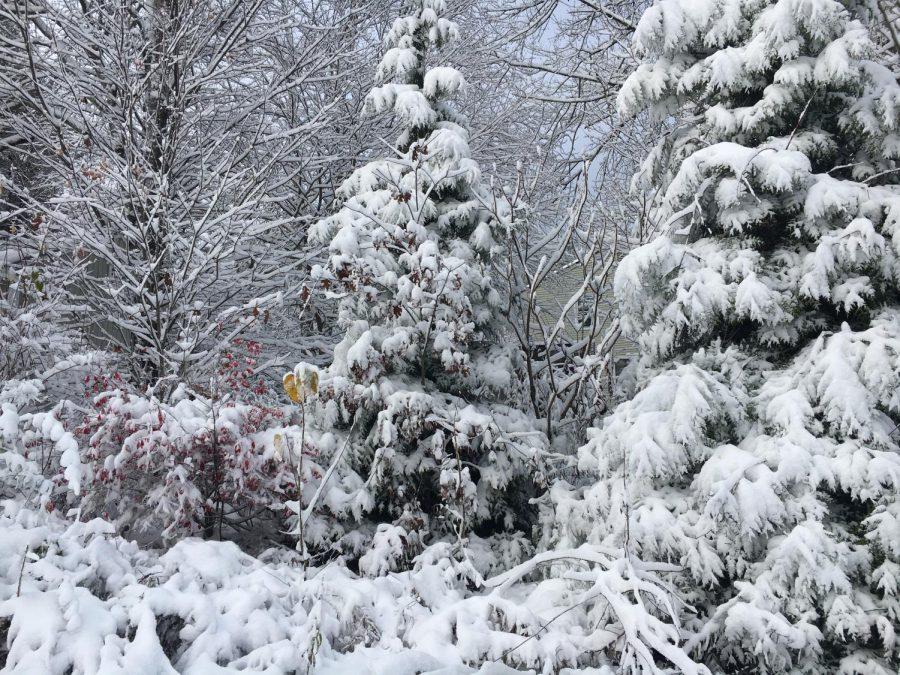 Snow in October (10/30/20)