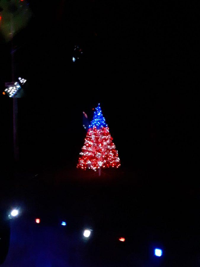 A decorated tree lights up the dark night.